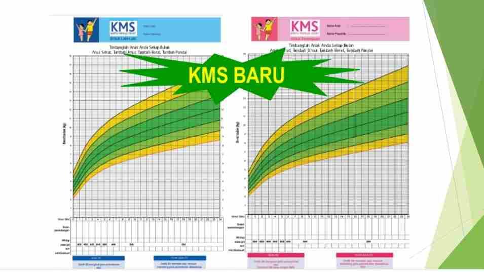 jangan-bingung-ini-cara-mudah-membaca-kartu-menuju-sehat-KMS